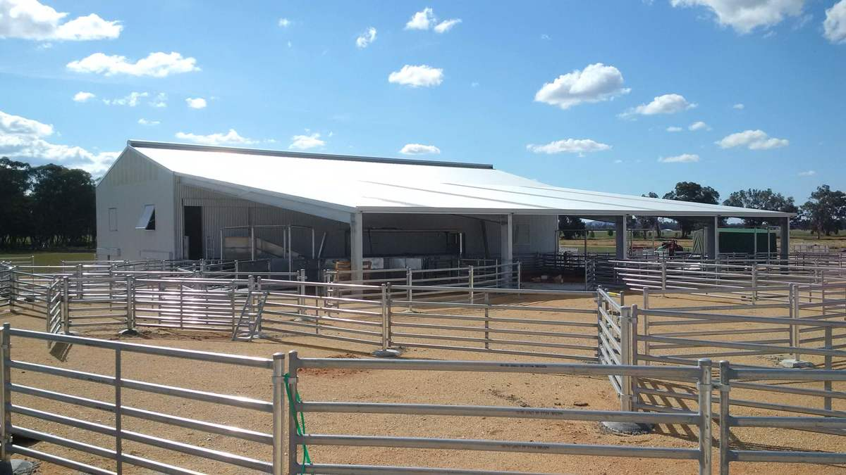 Shearing shed - Cowra