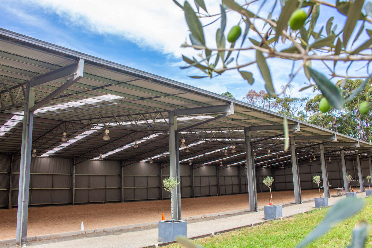 Dressage arena - Mossvale - Side view