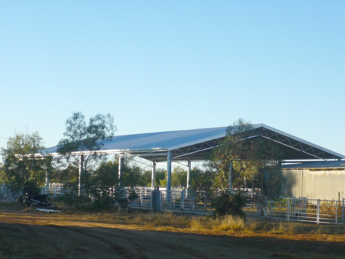 Slanted view of yard cover in Nyngan